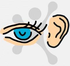 Abbildung zweier Sinne - Sehen und Hören